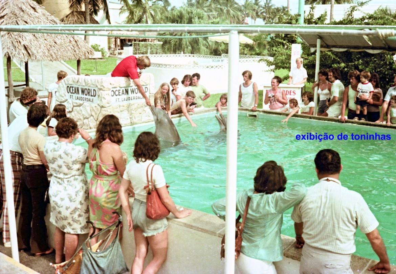 00745 976-97-21 exibiçao de toninhas no Ocean World de Fort Lauderdale EUA