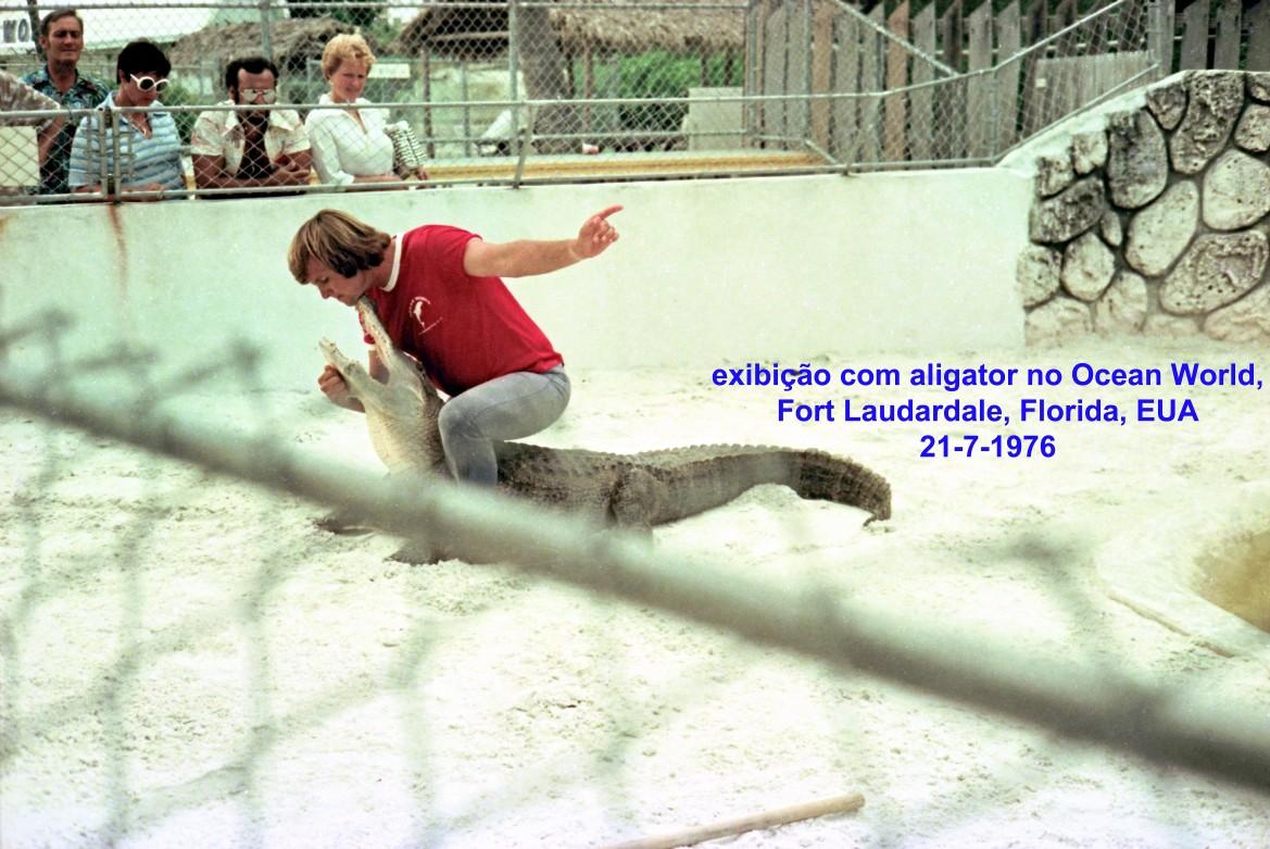 00747 976-07-21 exibição com aligator no Ocean World de Fort Laudardale