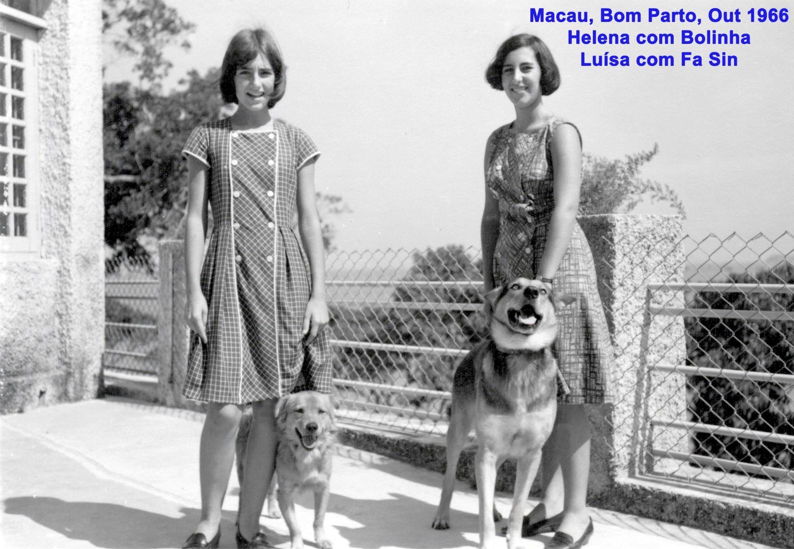 034 66-10 terraço do Bom Parto, filhas e cães