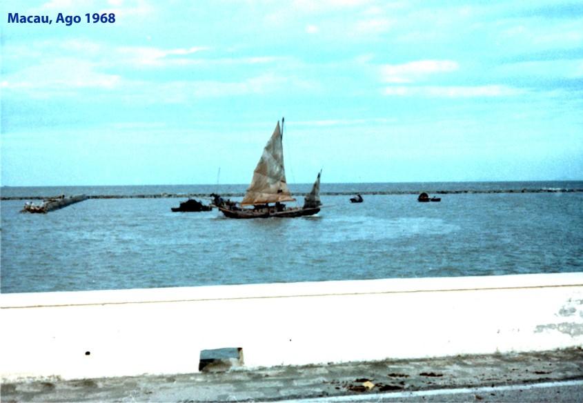 236 68-08 embarcação à vela