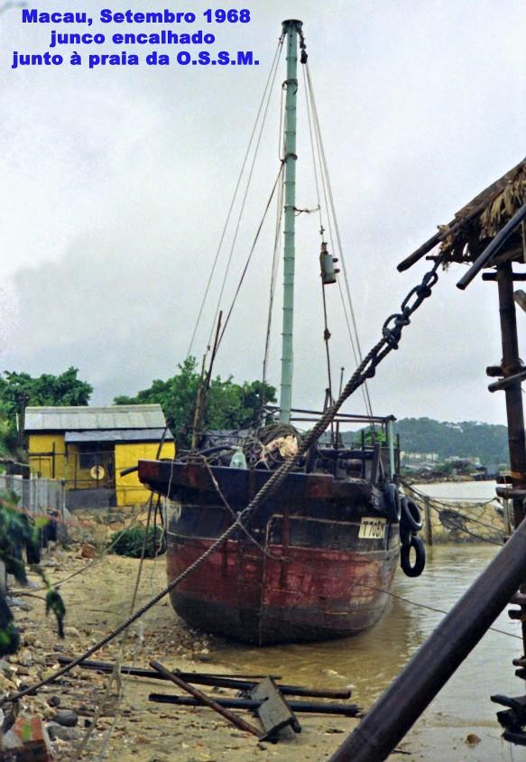 246 68-09 junco encalhado junto praia da OSSM