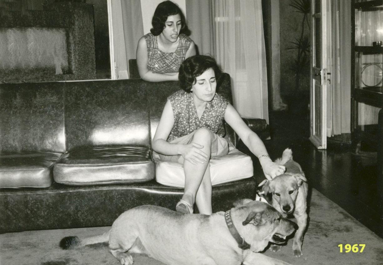 269 67 Luisa, Lena e cães
