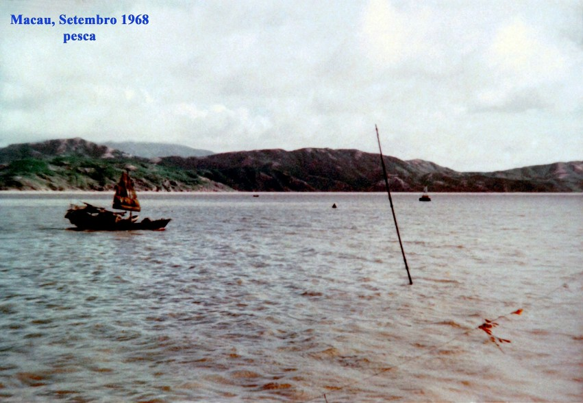 281 68-09 pesca