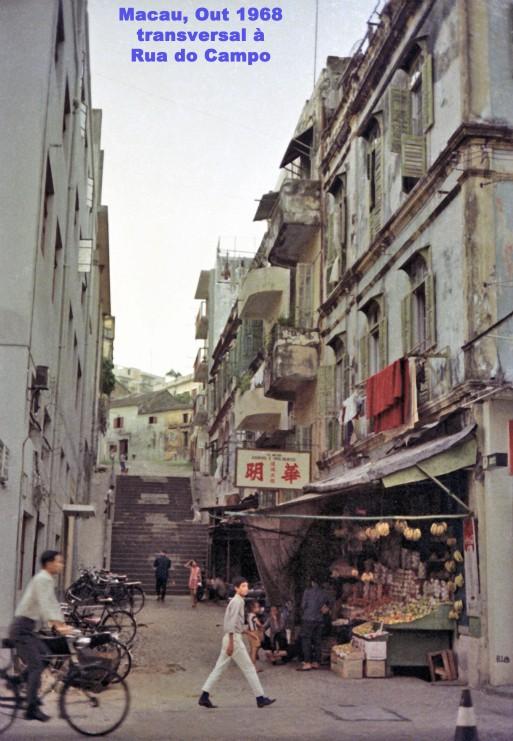310 68-10 transversal à Rua do Campo
