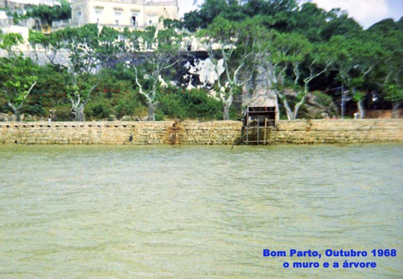 314 68-10 Bom Parto visto do mar-o muro e a árvore