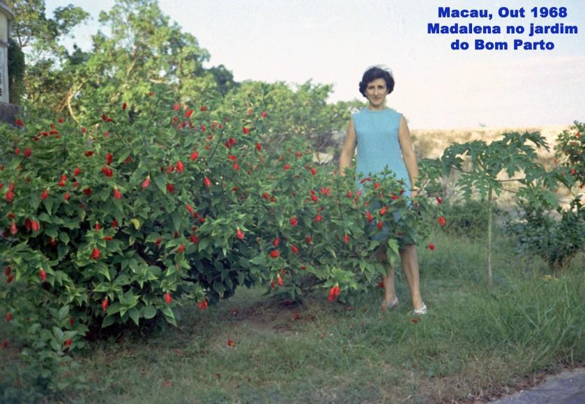 319 68-10 Madalena no jardim do Bom Parto